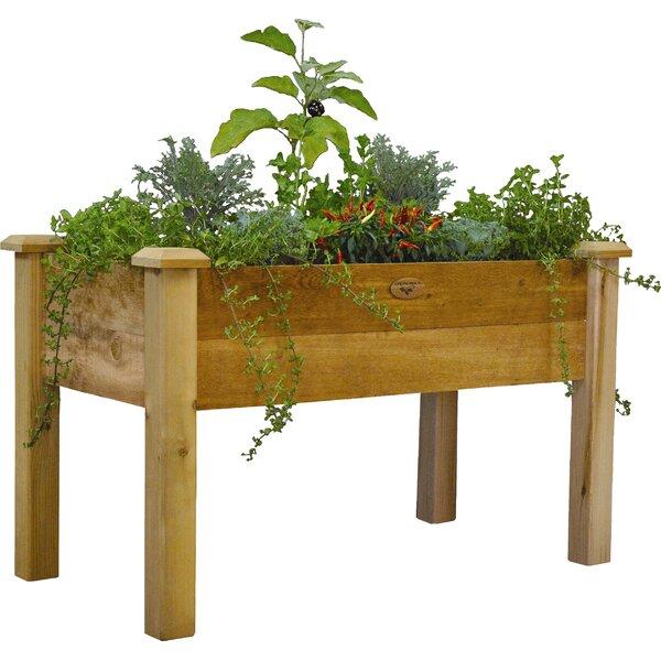 4 ft x 2 ft Cedar Raised Garden by Gronomics