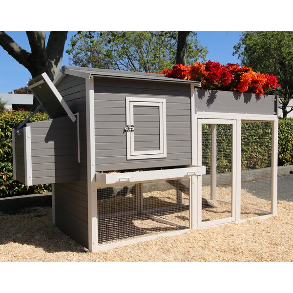 Josepha Chicken Coop with Rooftop Garden by Tucker
