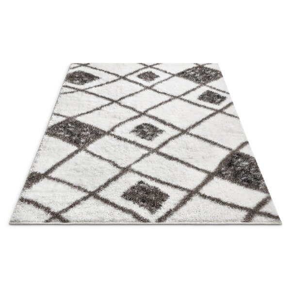 Puentes Outstanding Artisan Shag Soft White Area Rug by Wrought Studio