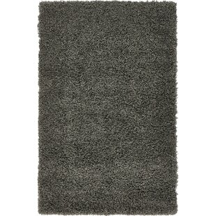 Lilah Graphite Gray Area Rug by Andover Mills