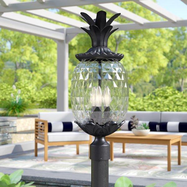 Kyra Outdoor 3-Light Lantern Head by Beachcrest Home