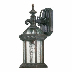 Best Reviews Kason 1-Light Outdoor Wall Lantern By Alcott Hill