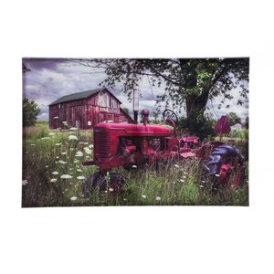 'Reds in the Picture' Photographic Print on Canvas by August Grove