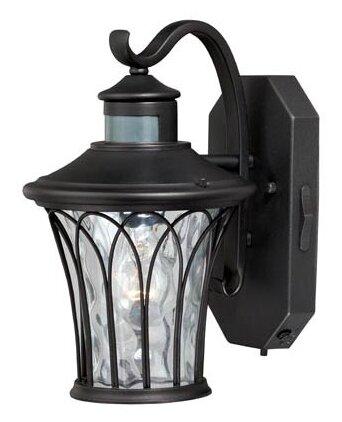 Hylan 1-Light Outdoor Wall Lantern by Alcott Hill