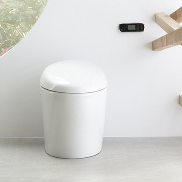 Karing Skirted One-Piece Elongated Toilet with Bidet Functionality by Kohler