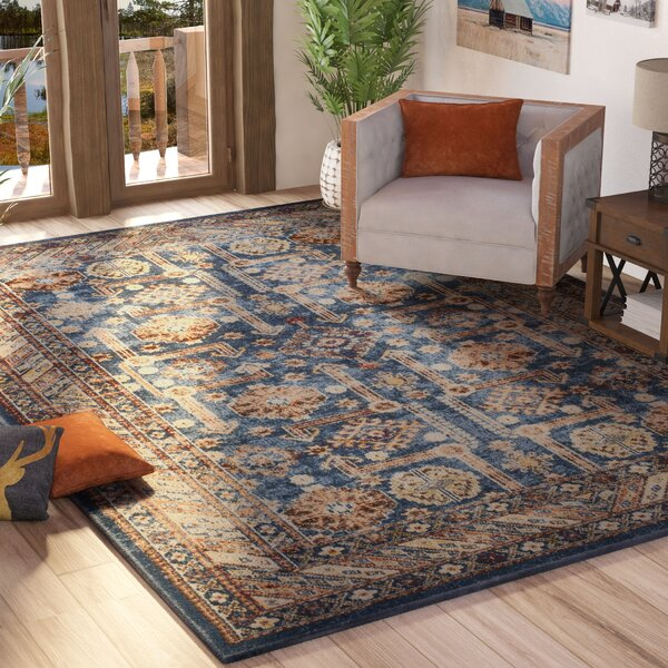 Isanotski Brown/Blue Area Rug by Loon Peak