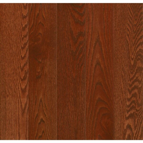 Prime Harvest 3-1/4 Engineered Oak Hardwood Flooring in Berry Stained by Armstrong Flooring