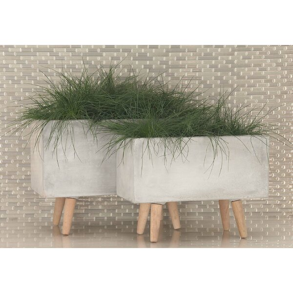 2-Piece Beech Wood Pot Planter Set by Cole & Grey