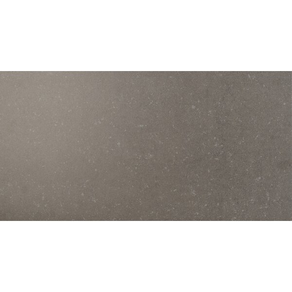 Dimensions 12 x 24 Porcelain Field Tile in Gray by MSI
