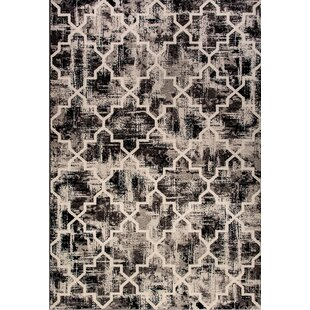 Shani Black Area Rug By Williston Forge