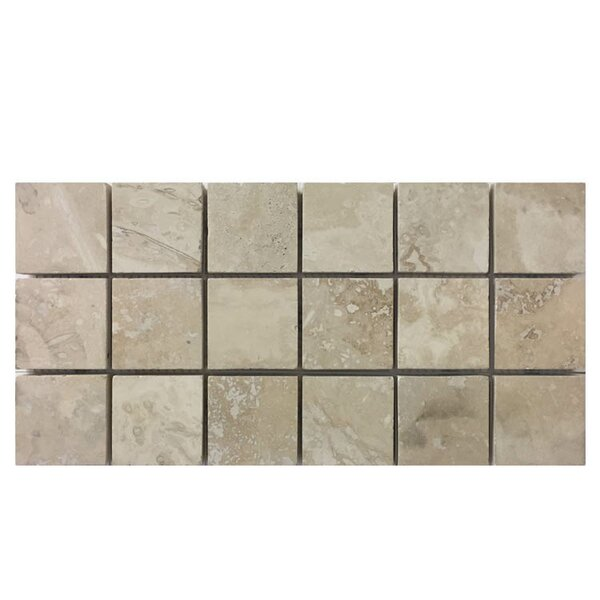 Honed 2 x 2 Natural Stone Mosaic Tile in Nysa by QDI Surfaces