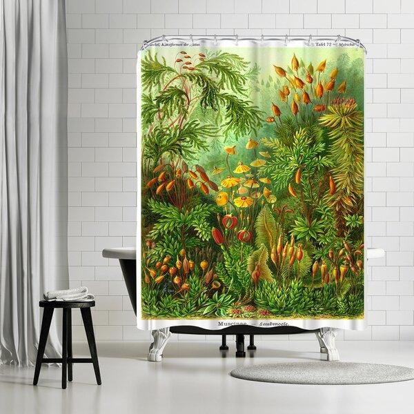 Adams Ale Haeckel Plate Shower Curtain by East Urban Home