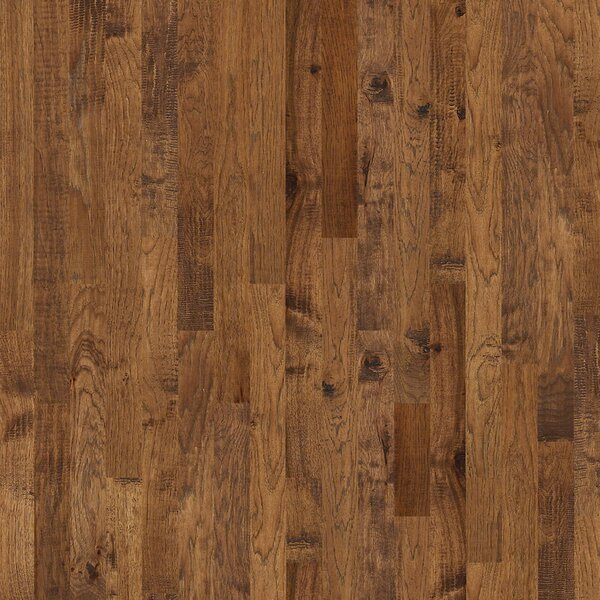 Zellwood 3-1/4 Solid Hickory Hardwood Flooring in Eagle Point by Shaw Floors