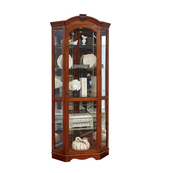 Purvoche Lighted Curio Cabinet by Darby Home Co Darby Home Co