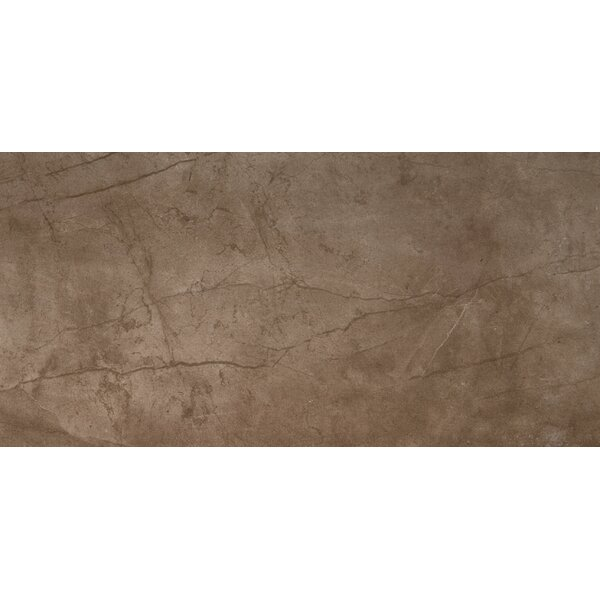 Citadel 24 x 35 Porcelain Field Tile in Brown by Emser Tile