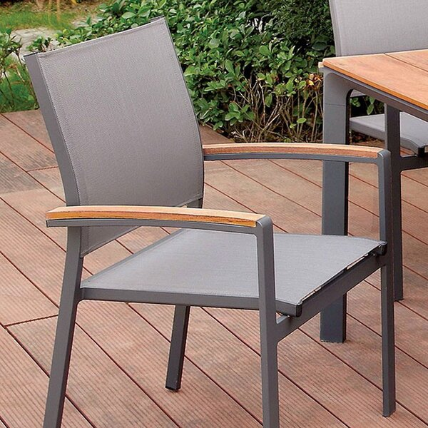 Lerman Patio Dining Chair (Set of 2) by Breakwater Bay