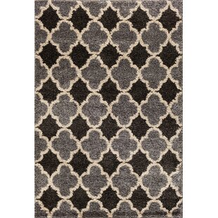 Buy luxury Hamilton Silver/Black Area Rug By Threadbind