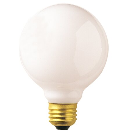 40W 120V Incandescent Light Bulb (Set of 24) by Bulbrite Industries