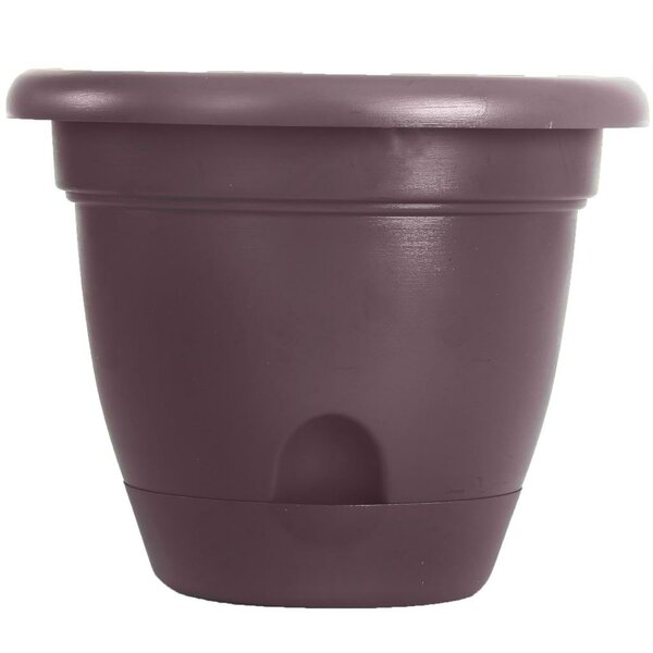 Lucca Self-Watering Plastic Pot Planter by Bloem