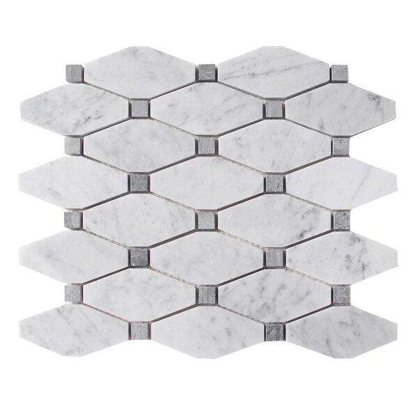 Carrara 12 x 12 Natural Stone and Marble Mosaic Tile