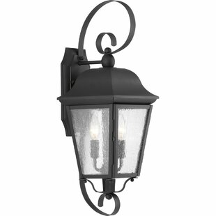 Ephraim 2-Light Outdoor Wall Lantern By Darby Home Co Outdoor Lighting