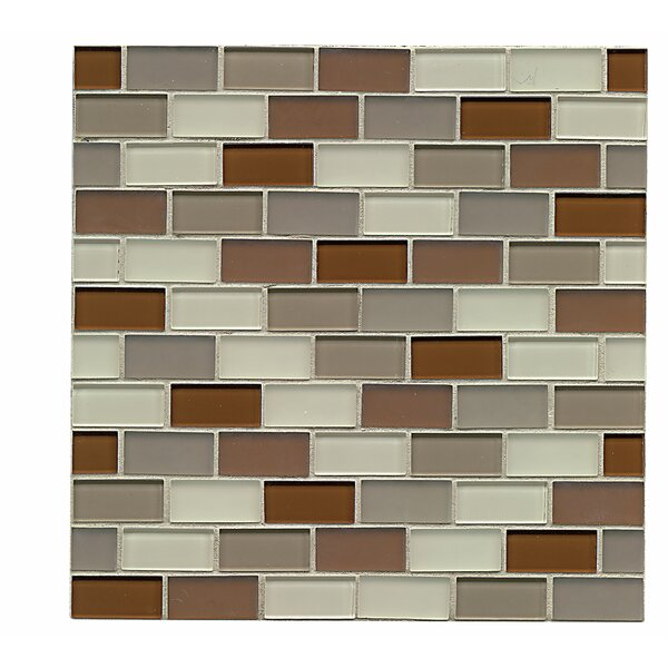 Harmony 1 x 1.88 Glass Mosaic Tile in Symetry by Grayson Martin