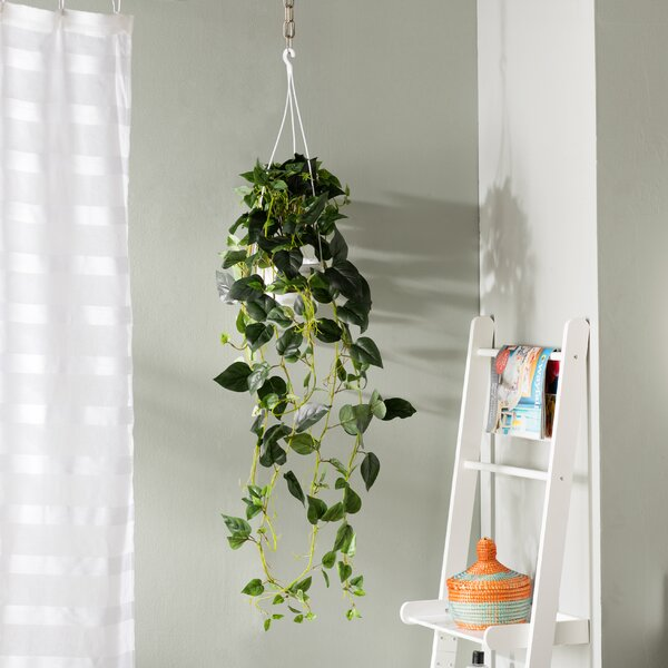 Philodendron Silk Hanging Plant in Basket by Mercury Row
