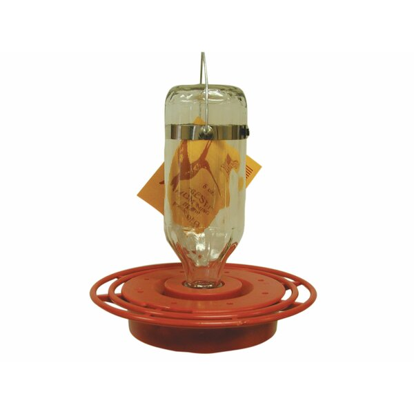 Best Hummingbird Feeder by Birds Choice