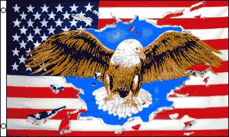 Patriotic Eagle Traditional Flag by Flags Importer