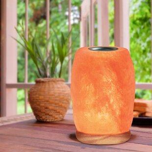 Top Reviews Hawley Himalayan Glow 10 Salt Lamp By Bungalow Rose