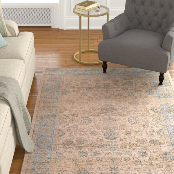 Cotswolds Light Blue/Oatmeal Area Rug by Astoria Grand