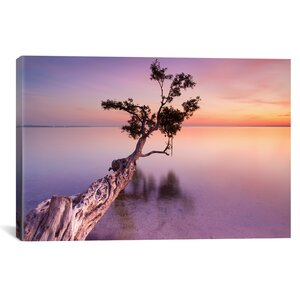 Water Tree XI Photographic Print on Wrapped Canvas by Latitude Run