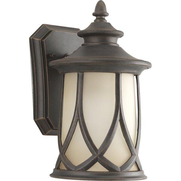 Triplehorn 1-Light Outdoor 100W Wall Lantern by Alcott Hill