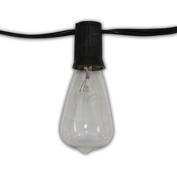 Edison 24-Light Globe String Lights by Aspen Brands
