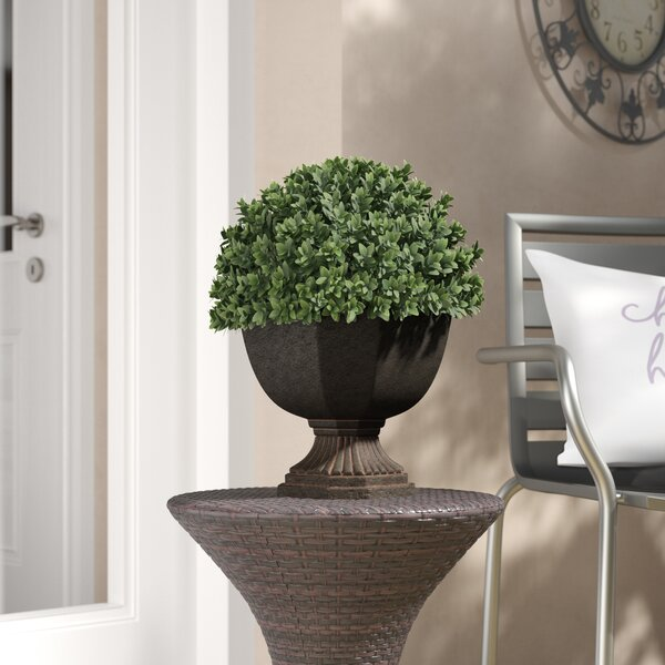 Artificial Boxwood Half-Ball Topiary in Urn by Three Posts