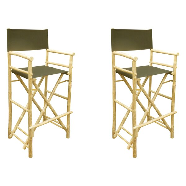 Olinda Folding Director Chair (Set of 2) by Darby Home Co Darby Home Co