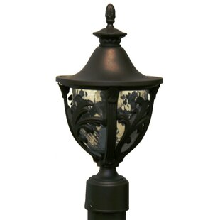 Check Prices Phillipstown 1-Light Lantern Head By Alcott Hill