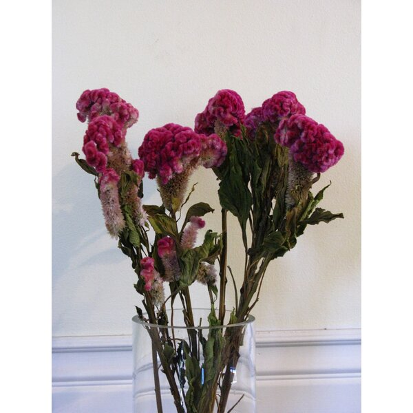 Dried Rose Coxcomb Floral Arrangements by From the Garden