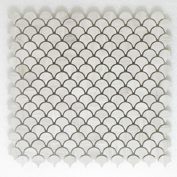 Petit Carrara Wall Polished 12 x 12 Natural Stone Mosaic Tile in White by Seven Seas