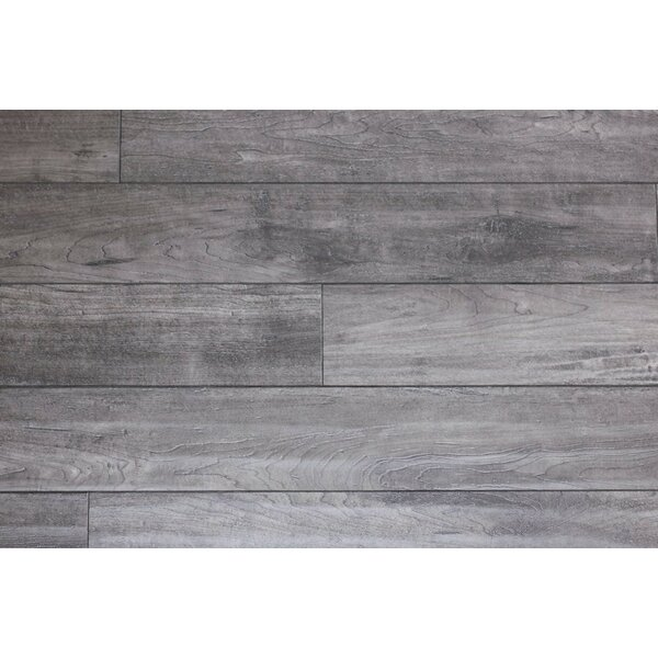 Heartland 5 x 48 x 12mm Maple Laminate Flooring in Spurs by Bellami