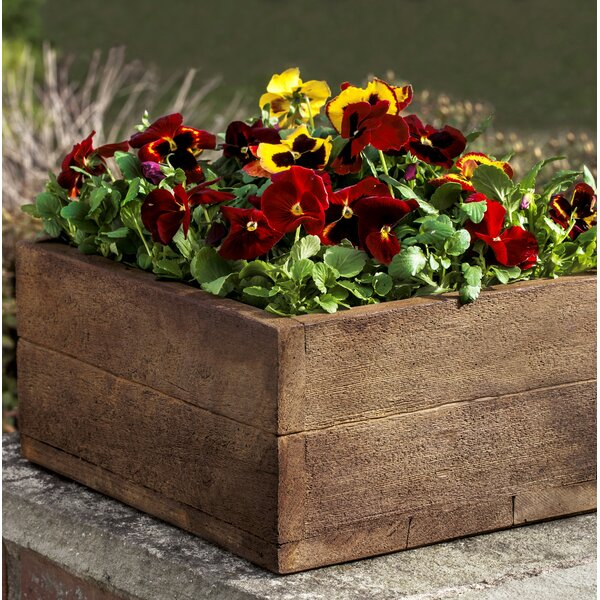 Ravishankar Cast Stone Planter Box by Union Rustic