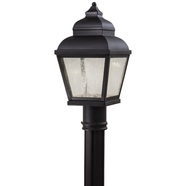 Dorchester Outdoor 1-Light LED Lantern Head by Darby Home Co