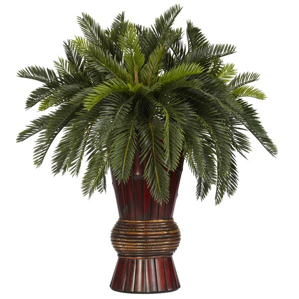 Cycas Bamboo Silk Desk Top Plant in Decorative Vase by Nearly Natural