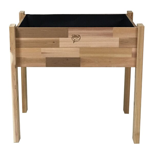 Enloe Cedar Planter Box by August Grove