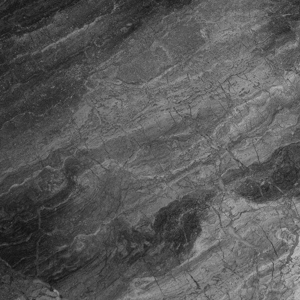 6 x 12 Marble Field Tile in Grigio Fantasia by Ephesus Stones