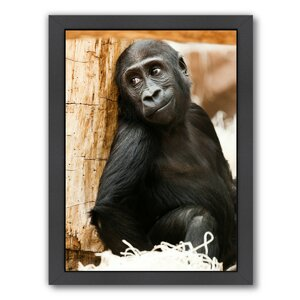 'Baby Monkey Ape Animal' Framed Photographic Print by East Urban Home
