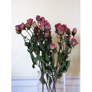 Dried Rose Floral Arrangements