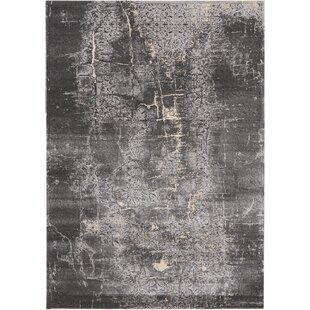Heritage Charcoal Area Rug By Kathy Ireland Home