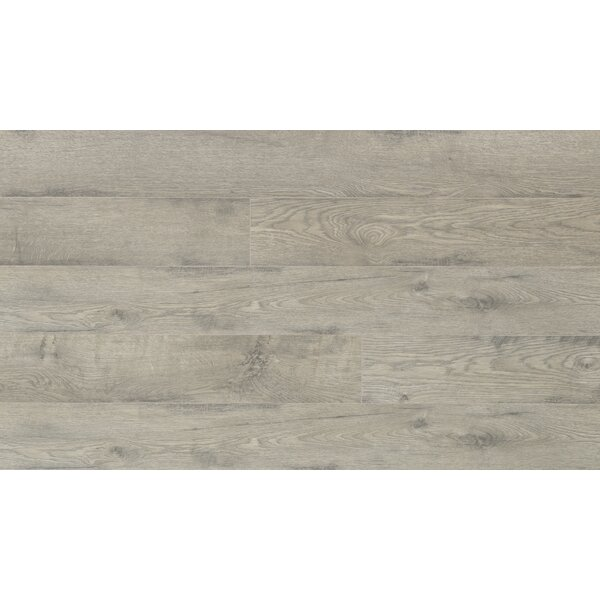 Elevae 6 x 54.34 x 12 mm Oak Laminate Flooring in Salt Swept by Quick-Step