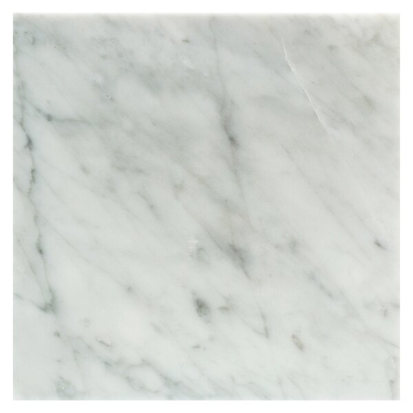 Carrara Polished 12 x 12 Marble Field Tile